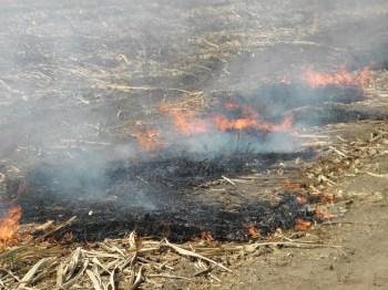 Resultado de imagen para quema de cañales guanacaste