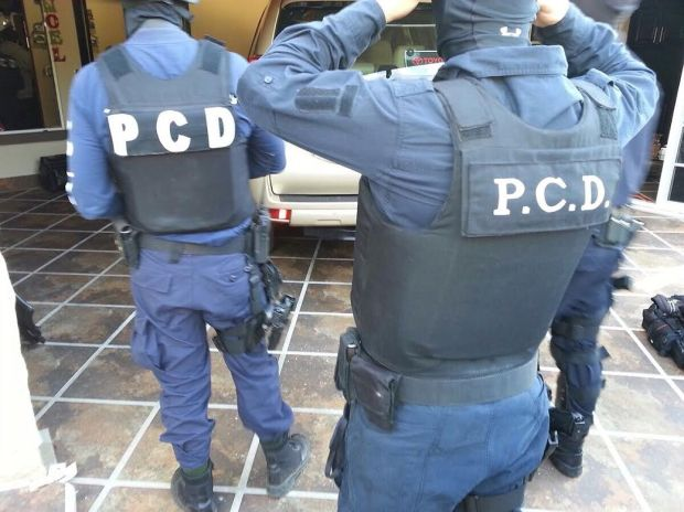 pcd2.jpg