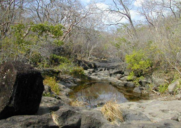 reserva-biologica-lomas-barbudal