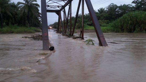 Puente-amarillo-Coto-47.jpg